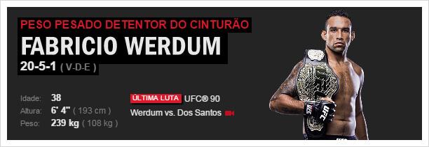 UFC Fabrício Werdum