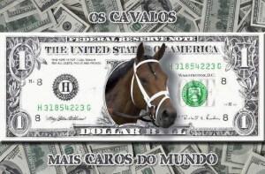 Cavalos mais caros dos mundo