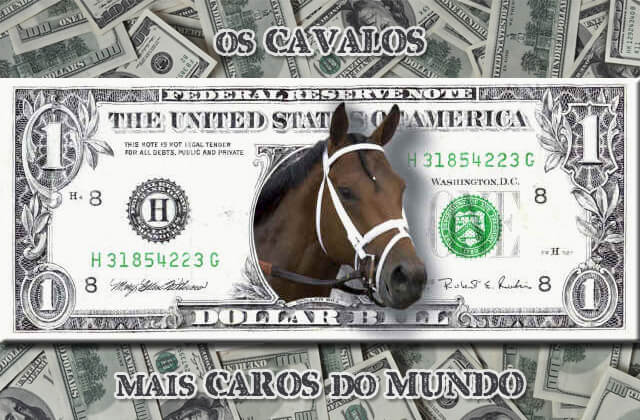 Top 7 Os Cavalos Mais Caros do Mundo