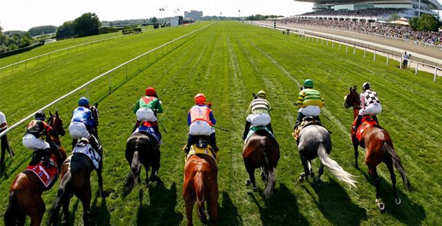 Corrida Flat Galope Apostar em Corridas de Cavalos