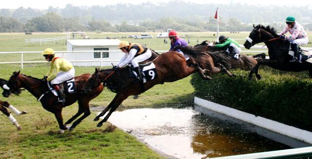 Corrida Steeplechase Jumping Apostar em Corridas de Cavalos
