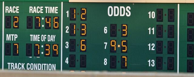 Cotações Probabilidades Apostar em Corridas de Cavalos