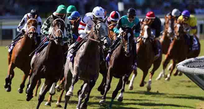 carreras-caballos