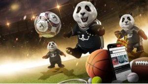 Royal Panda esportes